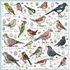 Birdsong Puslespil