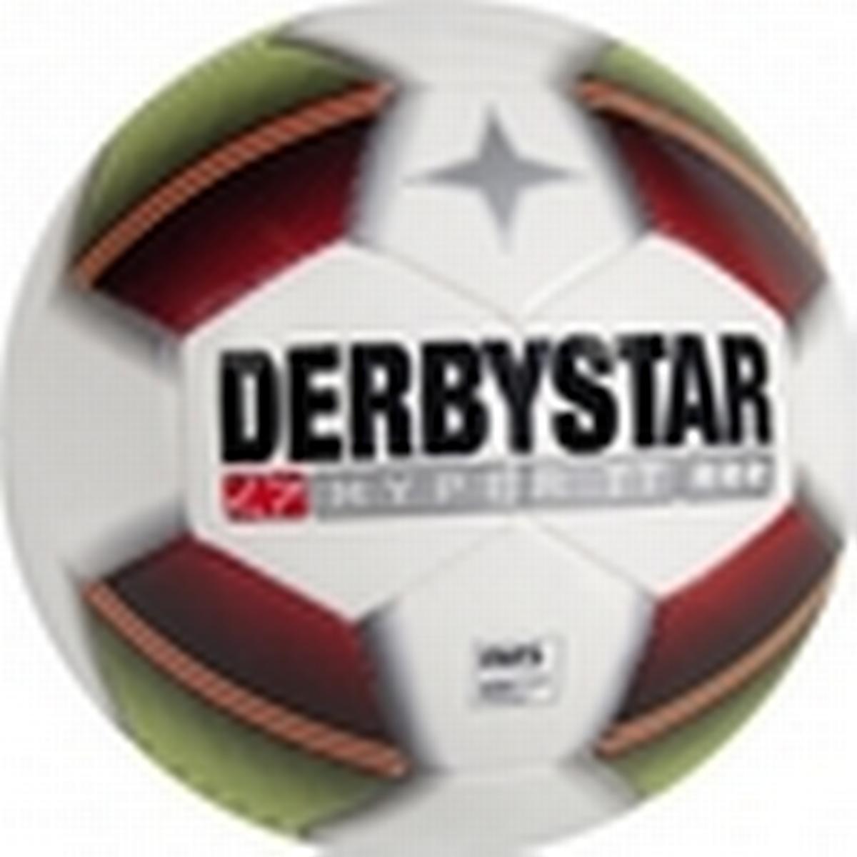 Derbystar Protect Star SB3 Shin Pads