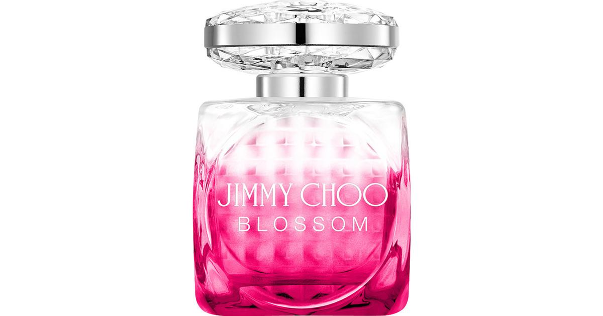 98a3e81a Jimmy Choo Blossom EdP 100ml - Compare Prices - PriceRunner UK