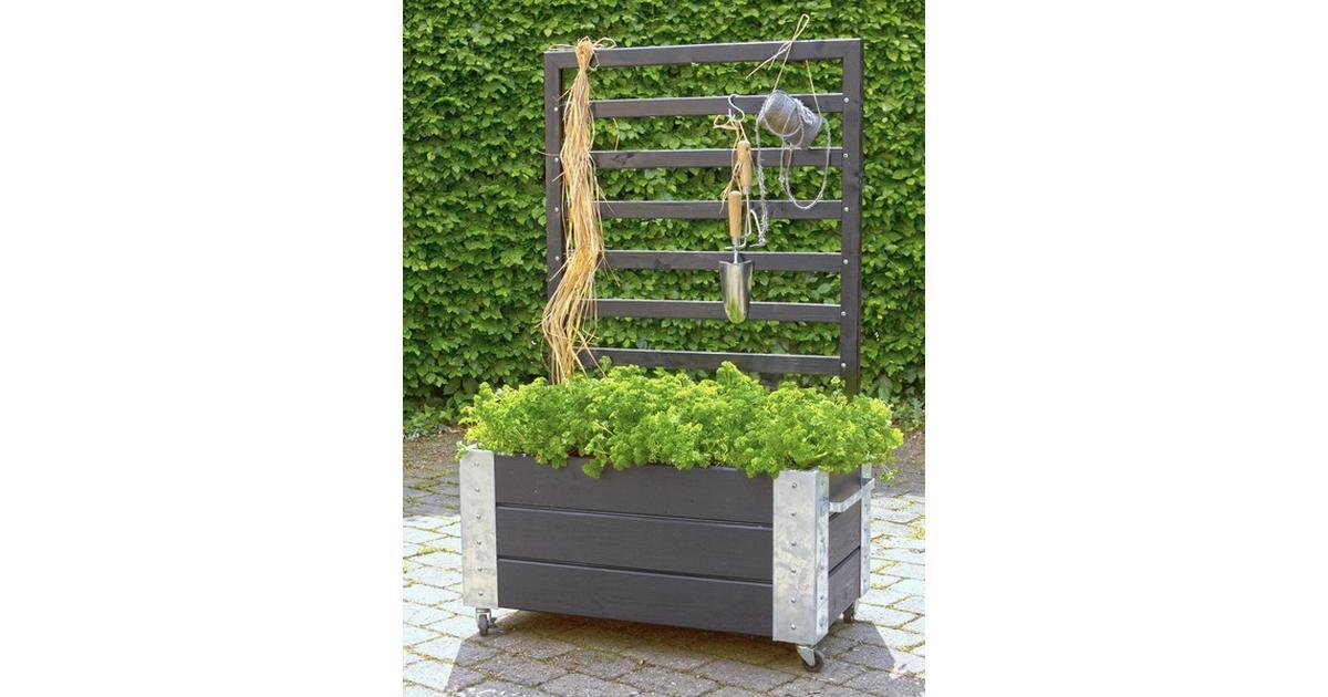 Groovy Plus Cubic Blomsterkasse M/Espalier 50cm - Sammenlign priser hos BQ-66