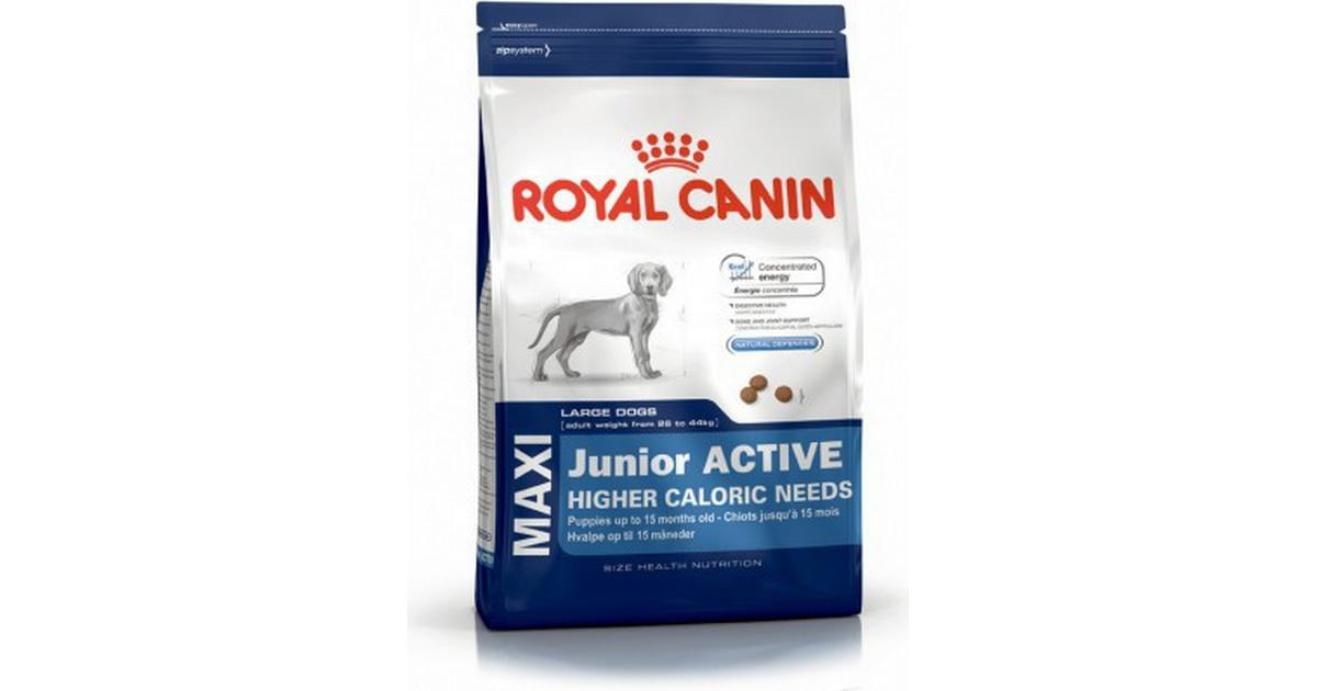 royal canin maxi junior active 15kg hitta b sta pris recensioner och produktinfo pricerunner. Black Bedroom Furniture Sets. Home Design Ideas