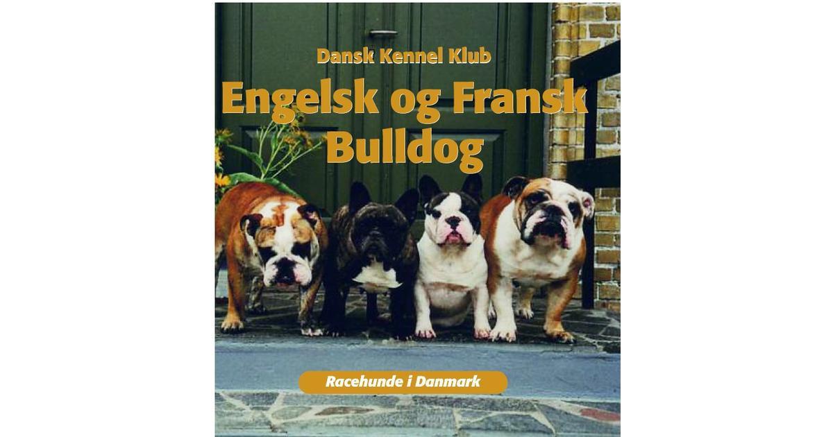 engelsk fransk