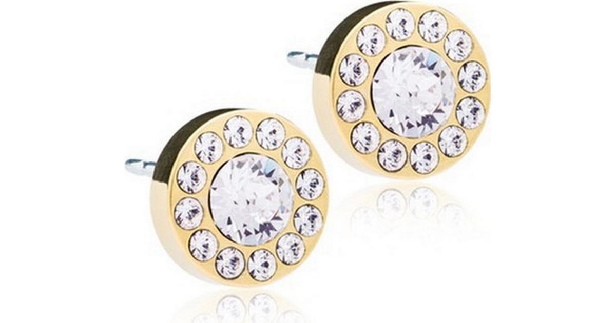 Blomdahl Skin-Friendly Medical Titanium Earrings w. Swarovski Crystals -  0.8cm (15‑1365‑01) - Hitta bästa pris a48da3a0dd54e