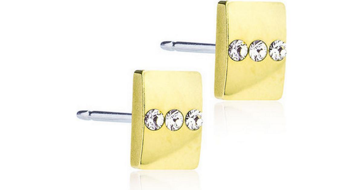 Blomdahl Skin-Friendly Medical Titanium Earrings w. Swarovski Crystals -  0.8cm (15‑1364‑01) - Hitta bästa pris 9112ed0cf80cc