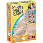 Sands Alive Starter