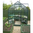 Orion Green Framed Greenhouse 6X8