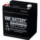 VMF AGM Batteri Standby och cyklisk 12 V 5 Ah SLA5-12