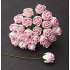 Rosenknopp Pink