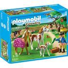 Playmobil Paddock With Horses & Pony 5227