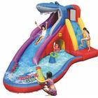 Happyhop Shark Club Bruce Wet & Dry Water Slide