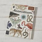 The White Company 'Animalium' Book