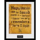 GB Eye Harry Potter Happiness Can be 30x40cm Plakater