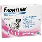 Frontline Spot On Large Dog 20-40Kg - 1
