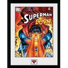 GB Eye Superman Burn FP3391