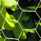 NSH Nordic Hexagonal Wire Netting 10mx90cm 106-227