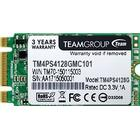 Team Group Lite TM4PS5 TM4PS5128GMC101 128GB