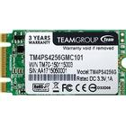Team Group Lite TM4PS5 TM4PS5256GMC101 256GB