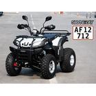 ATV Shineray 200 - T3A godkendelse til vejbrug for private og erhverv med automatgear