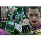 Hot Toys The Joker (Arkham Asylum) 1:6 Hot Toys Figure