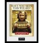 Harry Potter Sirius Azkaban - 16 x 12 Inches Framed Photograph