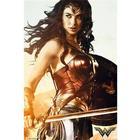 Wonder Woman Battle Plakat