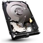 Seagate Barracuda ST2000DM001 2TB
