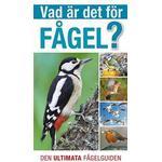 Vad är det för fågel?: den ultimata fågelguiden (Flexband, 2013)