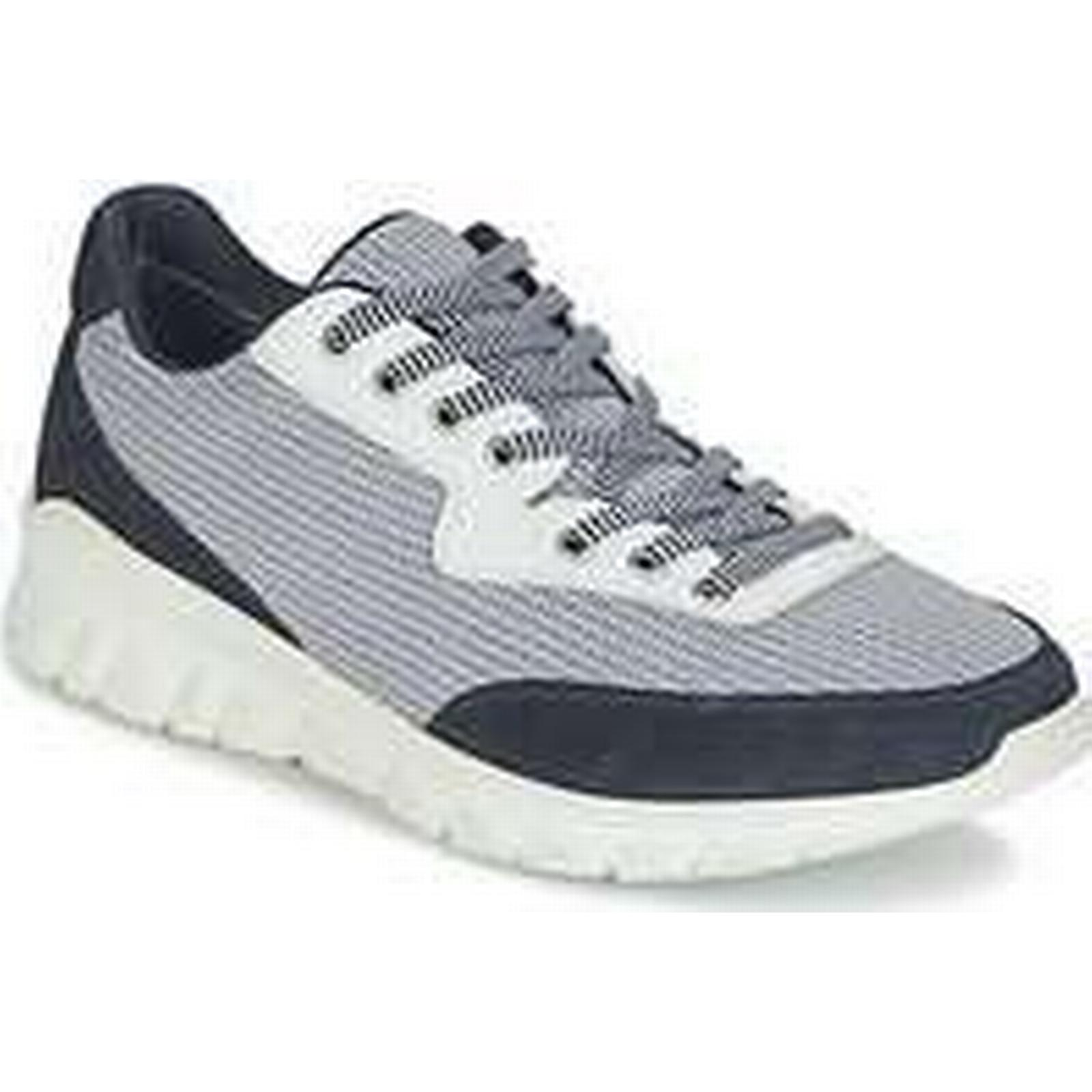 Spartoo.co.uk Shoes Paul Joe REPPER men's Shoes Spartoo.co.uk (Trainers) in Blue 36451f