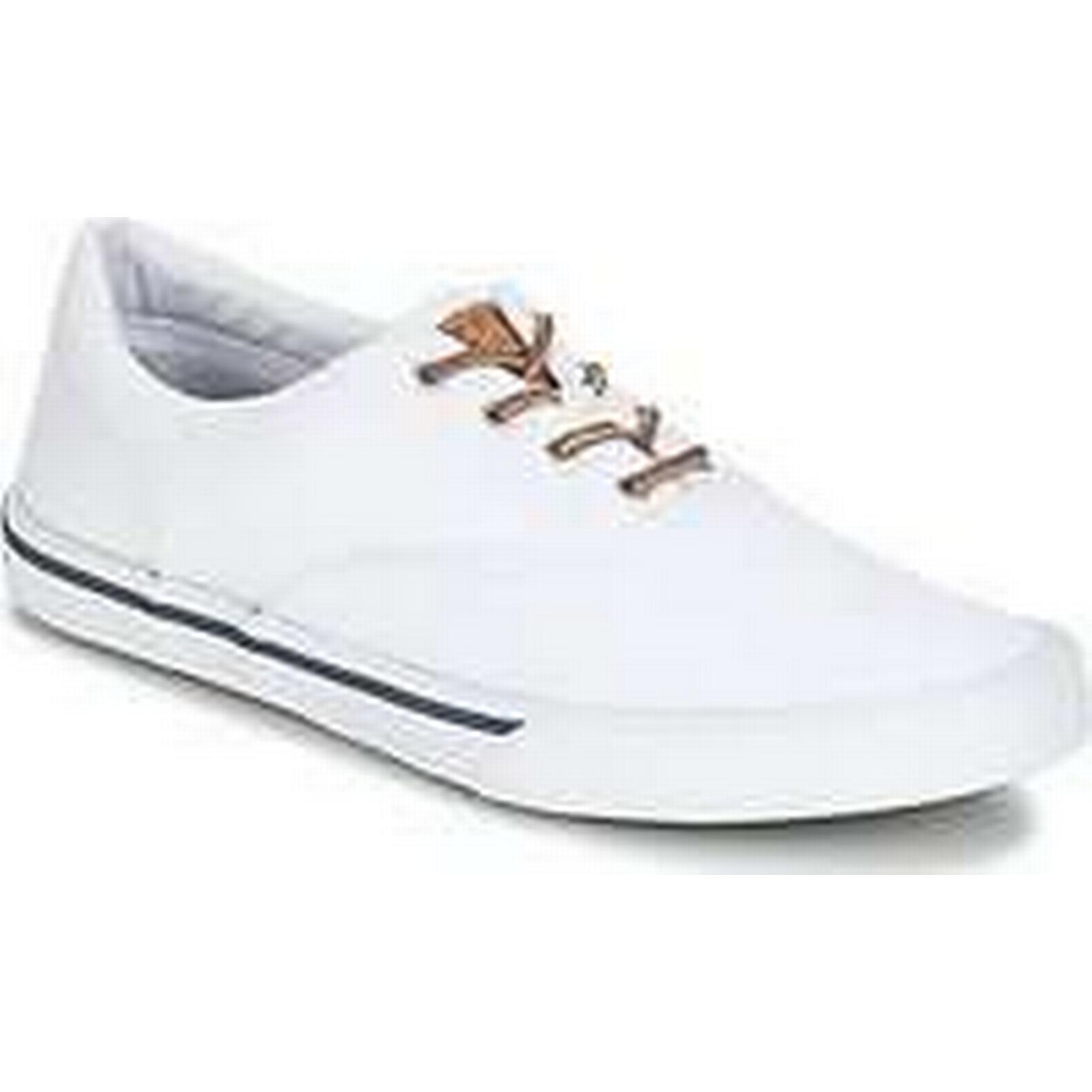 Spartoo.co.uk Sperry Top-Sider men's STRIPER II CVO WASHED men's Top-Sider Shoes (Trainers) in White d24d37