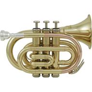 Musikinstrument Roy Benson PT-101G