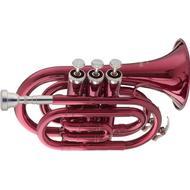 Trompet Musikinstrumenter Stagg WS-TR247S