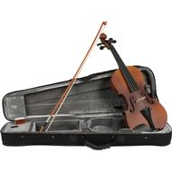 Musikinstrument Fazley VI-900