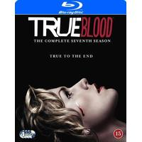 True blood: Säsong 7 (Blu-Ray 2014)