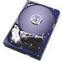 IBM Deskstar 180GXP 120GB / IDE100