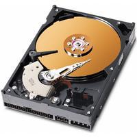 Western Digital Caviar SE WD800JB 80GB