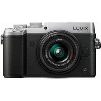 Panasonic Lumix DMC-GX8 + 14-42mm II OIS