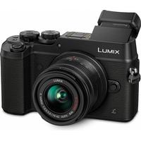Panasonic Lumix DMC-GX8 + 14-42mm OIS