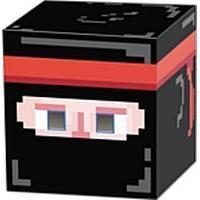 Ninja 8-Bit Box Head 3D Mask - 23cm