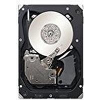 MicroStorage MS-ST3300655SS 300GB