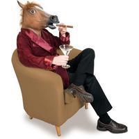 Hestemaske, der ligner et hestehoved