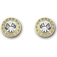 Swarovski Angelic Guldpläterade - Gold Plated Earrings (1081941)