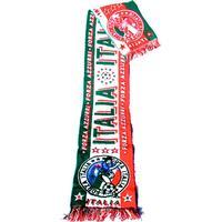 Forza Italy scarf