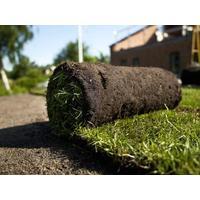 rullegræs pricerunner