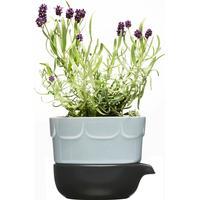 Sagaform Green 2-delad odlingskruka, lavendelblå