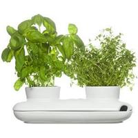 Sagaform Herb Pot Duo 8cm