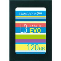 TeamGroup L3 EVO T253LE120GTC101 120GB
