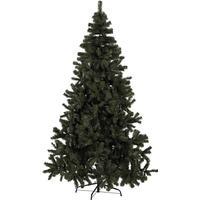 Star Trading Quebec 210cm Juletræ