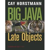 Big Java: Late Objects (Häftad, 2012)