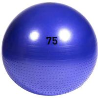 Adidas Gym Ball 75cm
