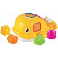 Ludi Whale Sorting Box